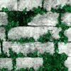 Gri taş desenli duvar kağıdı yeşil çiçek Elemental 42005-1 duvar kağıdı